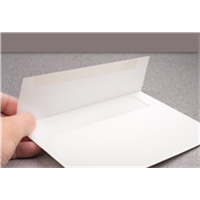 Blank Envelopes for Cards
